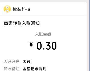 金猪记账app,看两个视频秒提0.3元!  金猪记账app 秒提0.3元 免费赚钱 免费领取 第3张