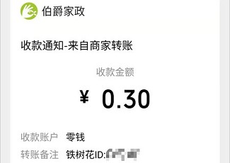 铁树花:类似木兰花,秒提0.3!  铁树花 木兰花 免费领取 第3张
